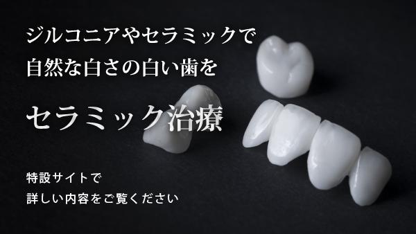 ceramicsite